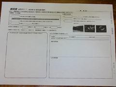 DSC01142_blog.jpg