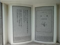 DSC02966_blog.jpg