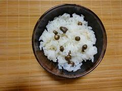 kore_blog.jpg